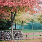 Park In Autumn/fall Colors Art Print