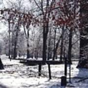 Park In The Snow Art Print