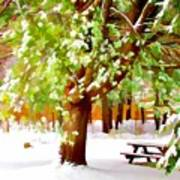 Park In Winter Art Print