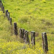 Parker Ranch Fence Art Print
