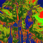 Parking Lot Palms 1 15 Art Print
