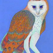 Parliament Of Owls Detail 1 Art Print