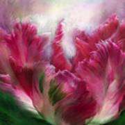 Parrot Tulip 2 Art Print