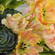Parrot Tulips And Desert Succulents Art Print