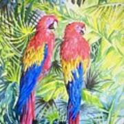 Parrots In Jungle Art Print