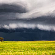 Passing By - Storm Passes By Lone Tree In Western Nebraska Art Print