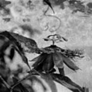 Passion Flower Black And White Art Print