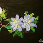 Passion Flowers Art Print