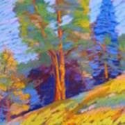 Pastel Class Demo Art Print