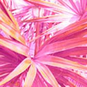 Pastel Dream In Pink Art Print