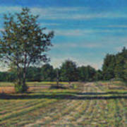 Pastoral Off Poplar Hill Road Art Print
