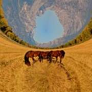 Pasture Of Another World Art Print