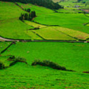 Pastures In The Azores Art Print