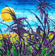 Patch Of Field Grass Art Print