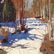 Path Behind Mowat Lodge Art Print