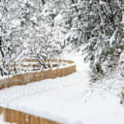 Path In Snow Art Print