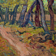 Path In The Garden Of The Asylum, By Vincent Van Gogh, 1889, Kro Art Print
