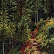 path in the woods 55h34 Ivan Ivanovich Shishkin Art Print