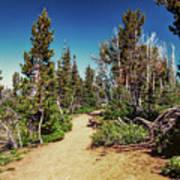 Path On Top Of Mt. Howard, Wallowa Or Art Print