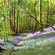 Path Through Bluebell Wood Art Print
