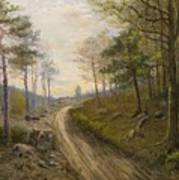 Path Through The Forest Art Print
