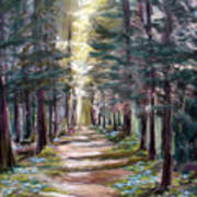 Path To Enlightenment Art Print