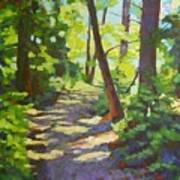 Path To The Lake Art Print