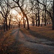 Path To The Sun Art Print