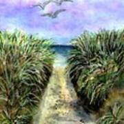 Pathway To The Shore Art Print