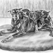 Patience - Doberman Pinscher And Puppy Print Art Print by Kelli Swan
