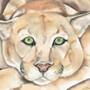 Patient Kitty Art Print