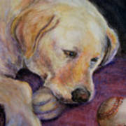 Patiently Waiting Art Print by Susan Jenkins