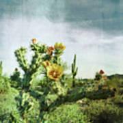 Patina Green Desert Bloom Art Print