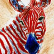 Patriotic Zebra Aceo Art Print