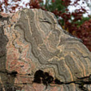 Pattern In A Gneiss Rock Art Print