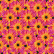 Pattern Of African Daisies Art Print