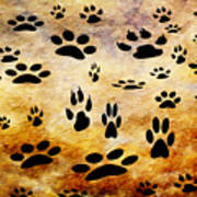 Paw Prints Art Print by Andee Design