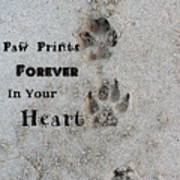 Paw Prints Forever In Your Heart Art Print