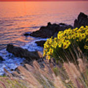 Pch Sunset Art Print