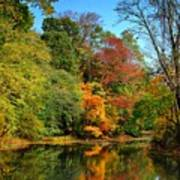 Peaceful Calm - Allaire State Park Art Print