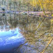 Peaceful Pond Reflections  Art Print