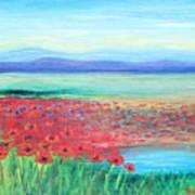 Peaceful Poppies Art Print