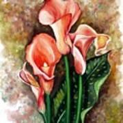 Peach Callas Art Print