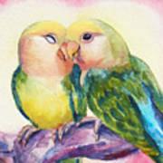 Peach-faced Lovebirds Art Print