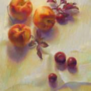 Peaches and Cherries Art Print