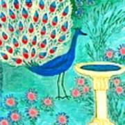 Peacock And Birdbath Art Print