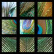 Peacock Feather Mosaic Art Print