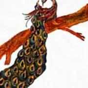 Peacock Xiii Art Print