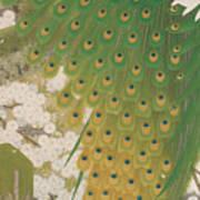 Peacocks And Cherry Tree Art Print