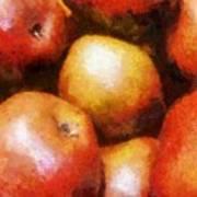 Pears D'anjou Art Print